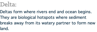 Delta: Deltas form where rivers end and ocean begins. They are biological hotspots where sediment breaks away from its watery partner to form new land.