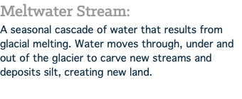 Meltwater Stream: A seasonal cascade of water that results from glacial melting. Water moves through, under and out of the glacier to carve new streams and deposits silt, creating new land.