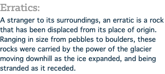Erratics: A stranger to its surroundings, an erratic is a rock that has been displaced from its place of origin. Ranging in size from pebbles to boulders, these rocks were carried by the power of the glacier moving downhill as the ice expanded, and being stranded as it receded.